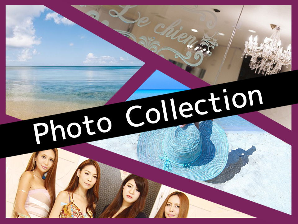 photocollection2